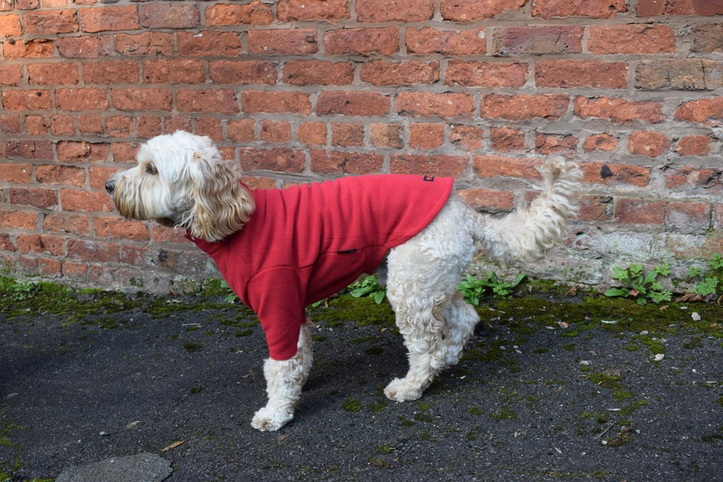 Water Resistant Dog Fleece Jumper in Red