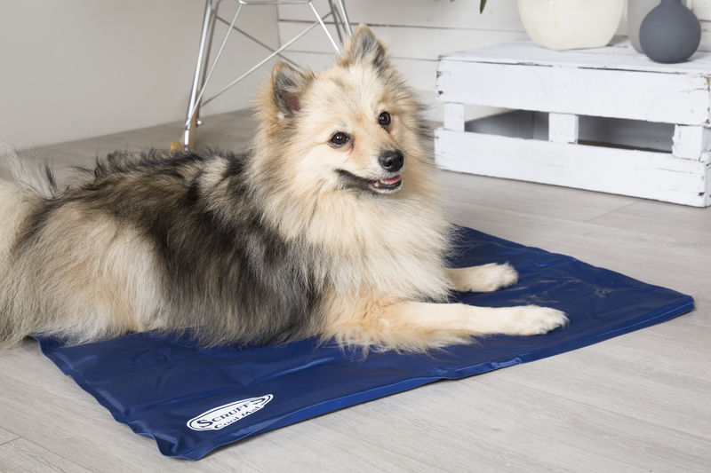Scruffs Cooling Mat for Dogs
