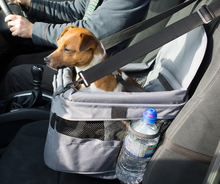Car Booster Seat for Dogs