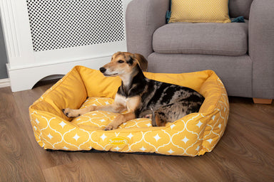 Casablanca Box Dog Bed in Mustard