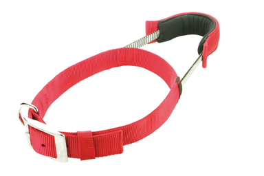 Patento Pet Dog Collar in Red