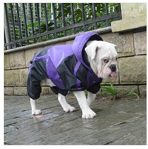Waterproof Trouser Suit Dog Coat for Bulldogs in Purple