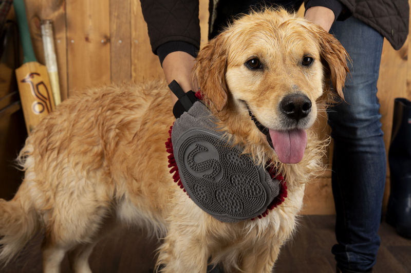 Scruffs Noodle Drying & Groom Mitt for dogs