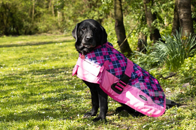 All Seasons Waterproof Dog Coat in Pink Check