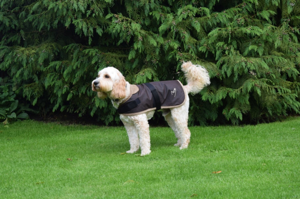 Classic Wax Jacket Dog Coat in Brown