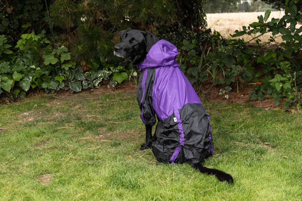 Waterproof Trouser Suit Dog Raincoat in Purple Black
