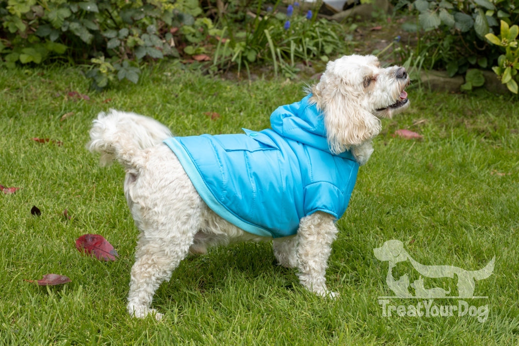 Blue Parka Dog Coat