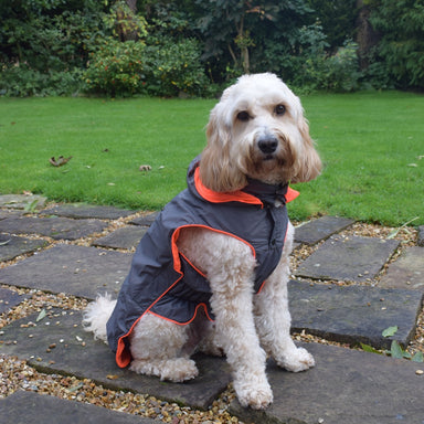 Go Walk Foldaway Anorak Dog Coat
