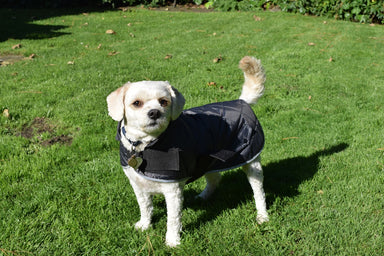 Go Walk Quilted Dog Coat in Classic Grey