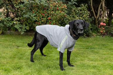 Waterproof Dog Rain Coat in Grey