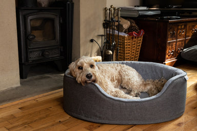 Memory Foam Oval Dog Bed (removable covers)