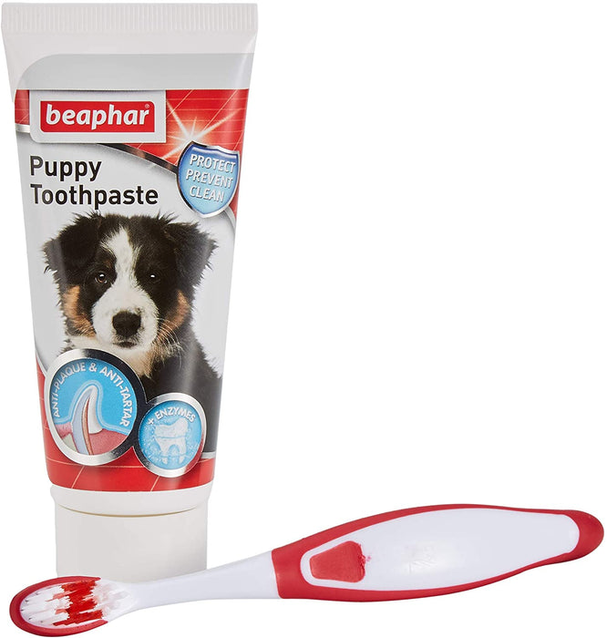 Puppy Dental Kit