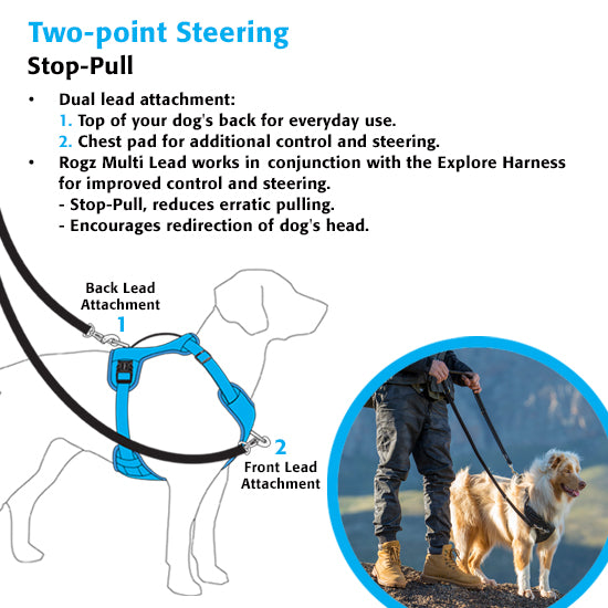 Rogz Explore Reflective Harness for Dogs in Red