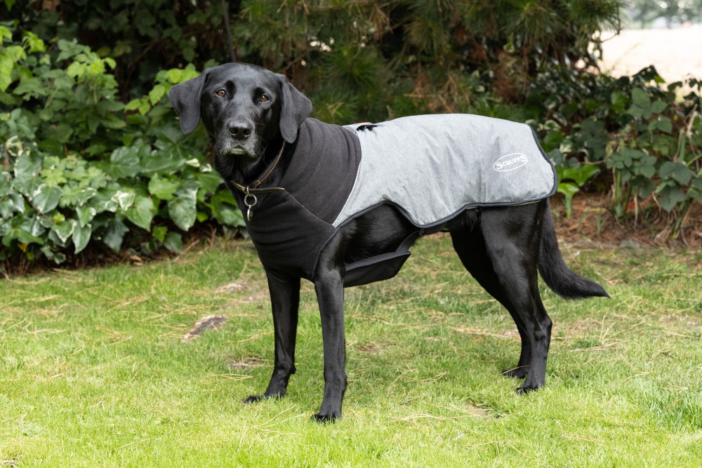 Scruffs Thermal Self Heating Quilted Dog Coat in Grey