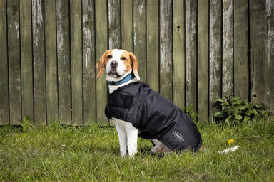 All Seasons Waterproof Dog Coat in Black