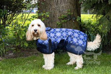 All Seasons Waterproof Dog Coat in Blue Check
