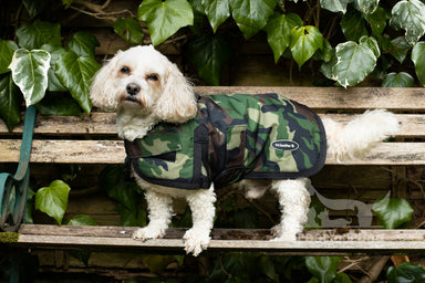 All Seasons Waterproof Dog Coat in Camouflage