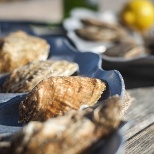 The Oyster Bed - LITTLE CREEK OYSTER FARM & MARKET