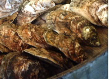 NYC / Brooklyn Delivery (100 ct) - LITTLE CREEK OYSTER FARM & MARKET
