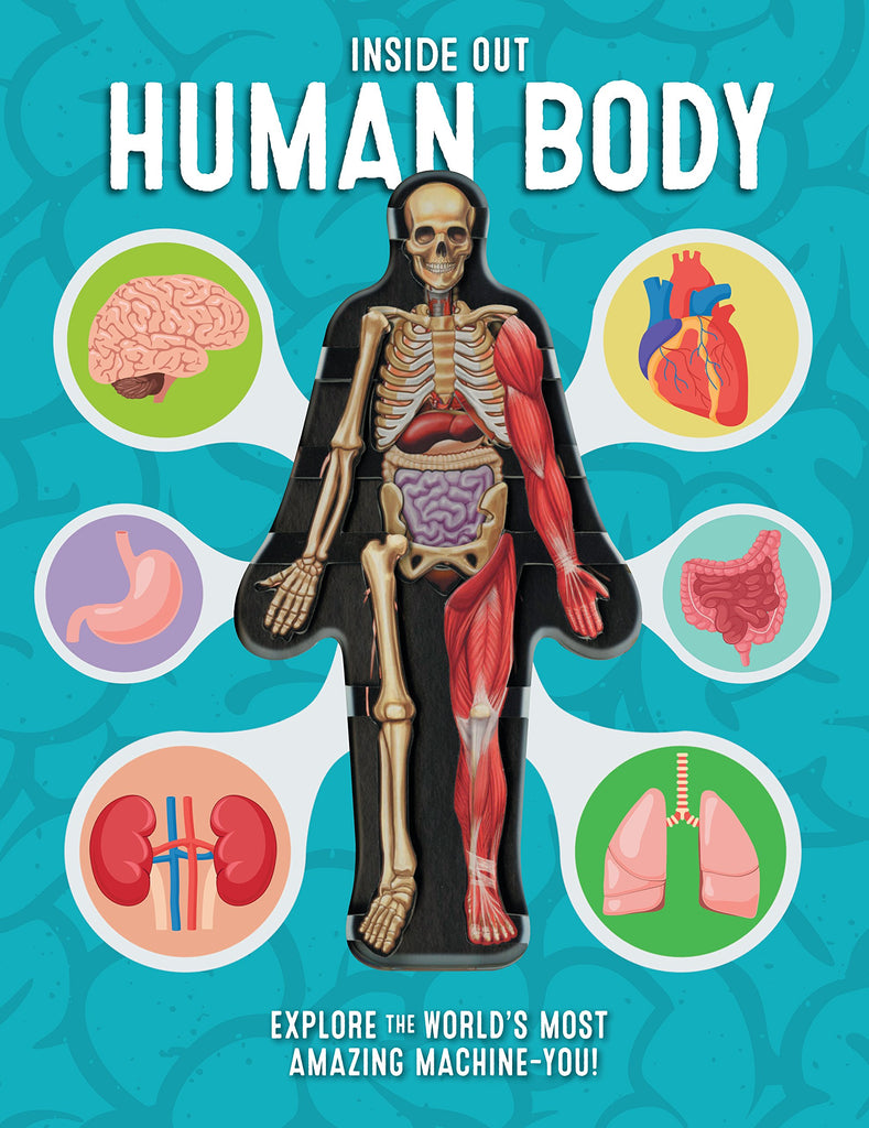 連大人都會愛上的泛科繪本 Inside Out Human Body: Explore the World's Most Amazing Machine-You!
