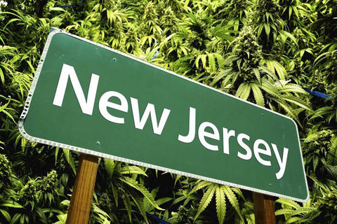new jersey cannabis laws legalization