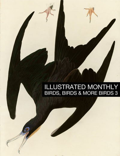 eBook Birds 3 Illustrated Monthly