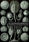 eBook Geometric Patterns in Nature Illustrated Monthly