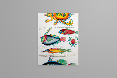 Book Poissons Illustrated Monthly
