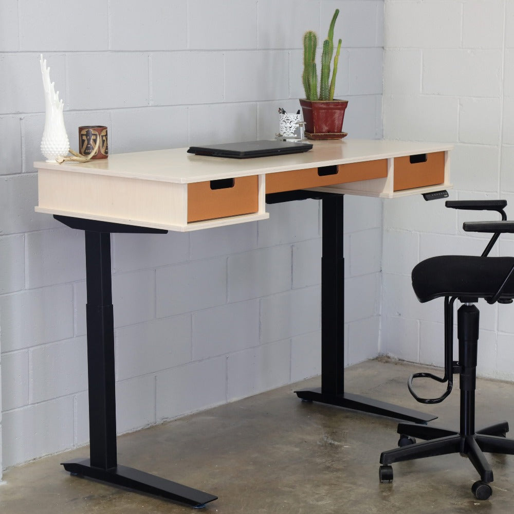 The Michelle // Sit + Stand Desk