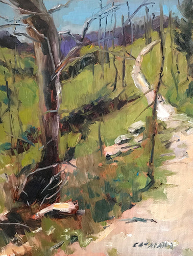 Along The Trail | 7x9 | Original Oil Painting