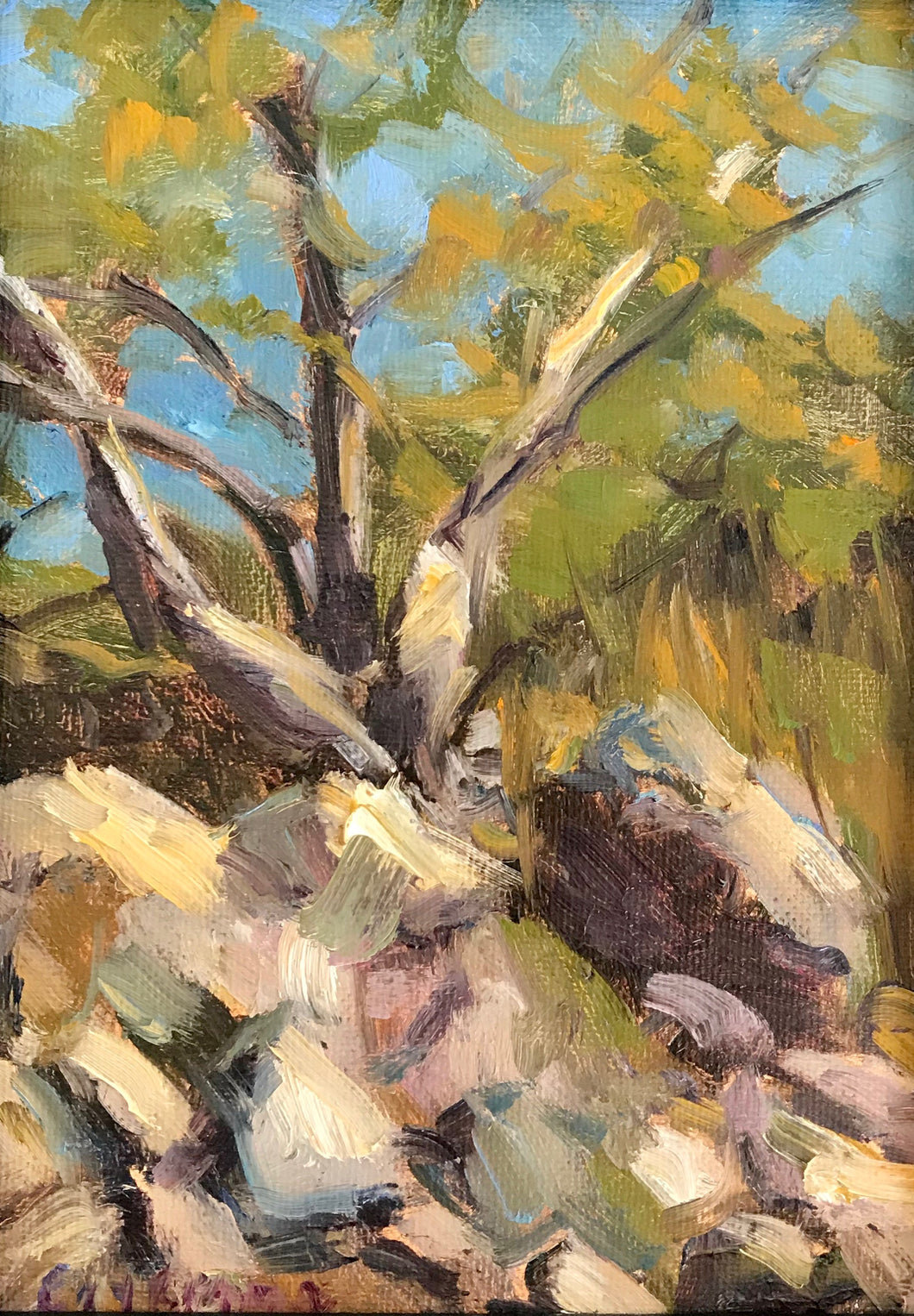 Fall |  5x7 | Original Oil Painting