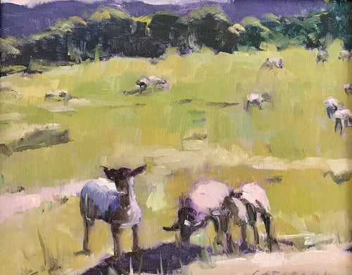 Field Of Sheep | 8x10 | Original Oil Painting