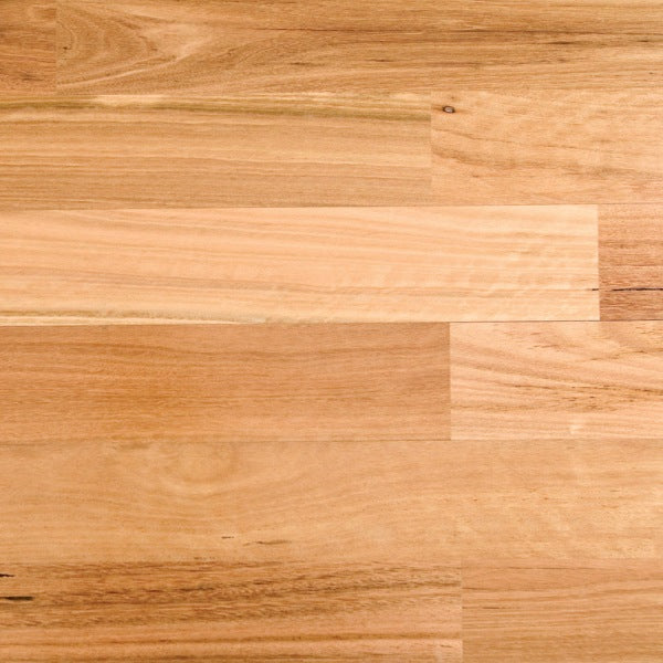 Blackbutt Solid Strip Australian Species