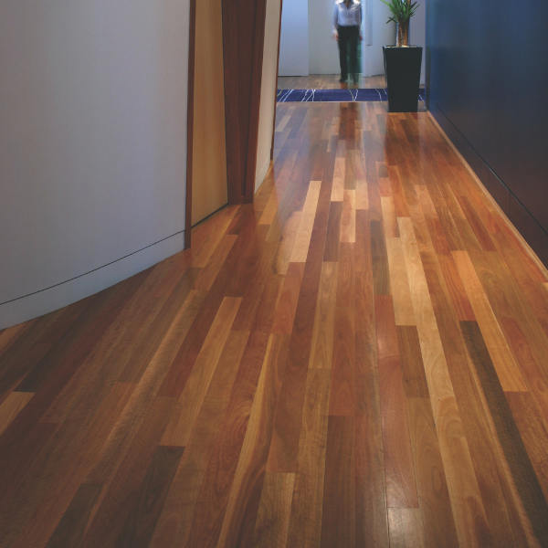 Spotted Gum Solid Strip Overlay  Australian Species