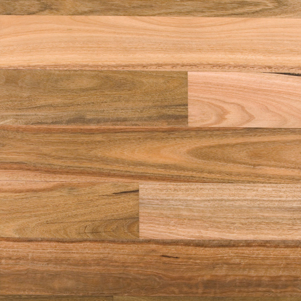 Spotted Gum Block Parquery flooring Australian Species