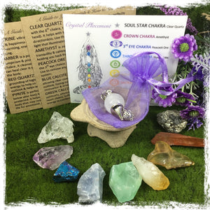 Crystal display of raw crystals following the chakra colours with pendulum and instruction cards  on a green background with purple flowers