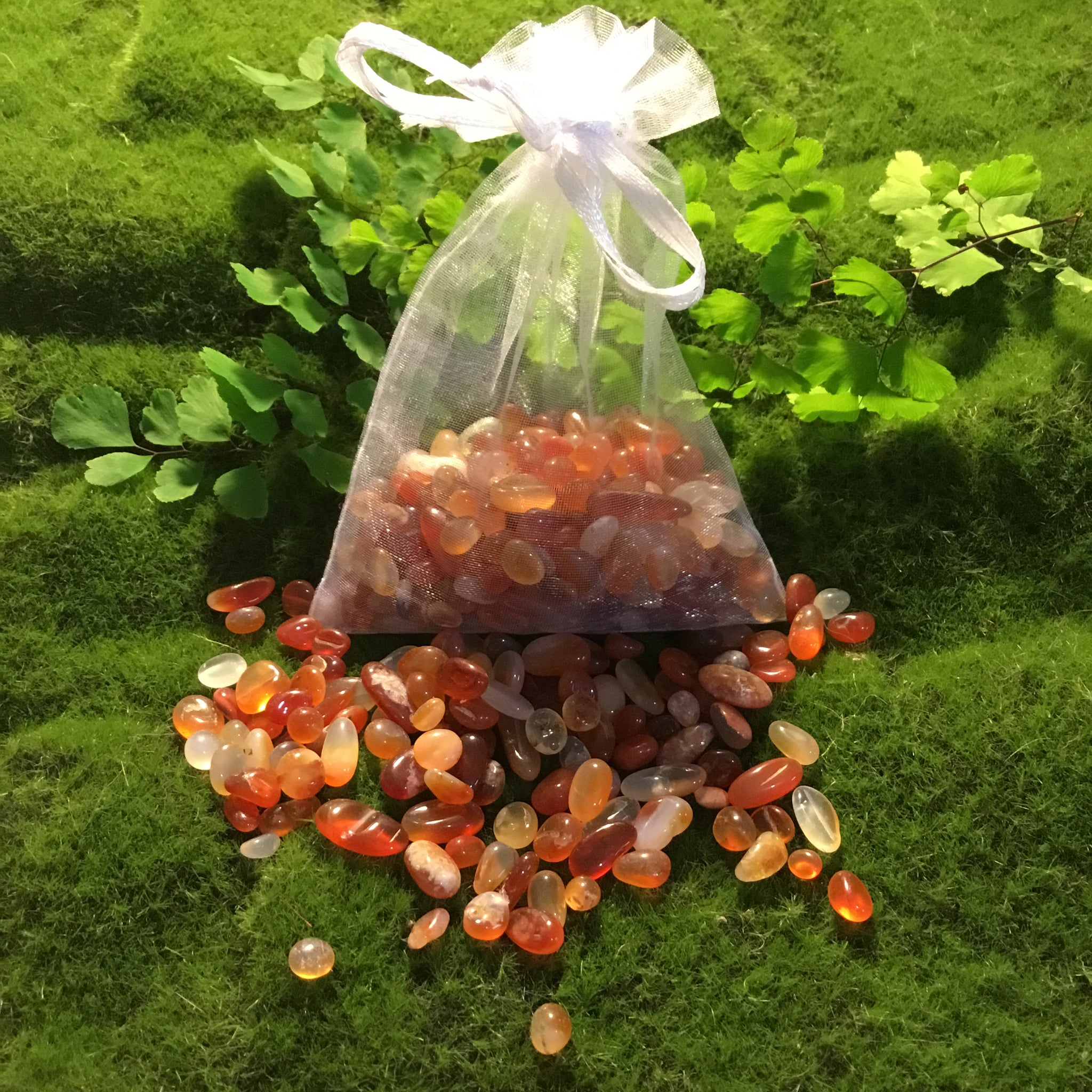 Crystal Chip Bulk Grid Bag CARNELIAN