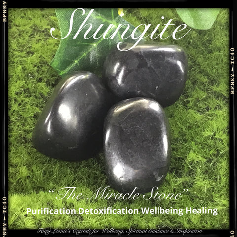 Crystals for Healing SHUNGITE Tumbled Stones