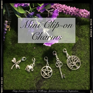 Mini Clip On Charms