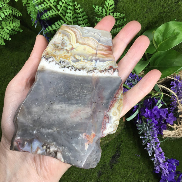 UNEARTHED TREASURE- Mexican Crazy lace Agate Altar Slice