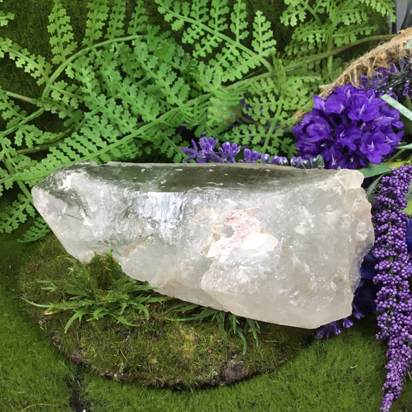 lemurian natural wand with woodland background