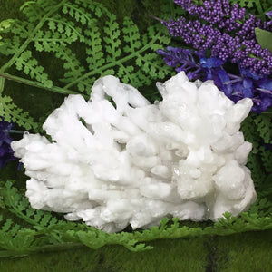 UNEARTHED CRYSTALS- RARE White Aragonite, Selenite and White Calcite Cluster