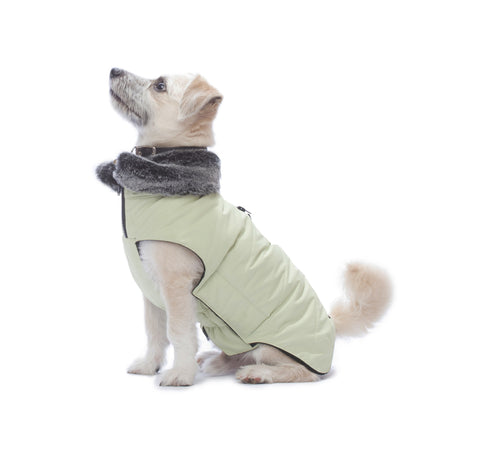dog jacket, tamarack jacket, repelzit, repelz-it, nano technology, nano treatment, long-lasting dog jackets, winter dog jacket, fleece liner, lime dog jacket