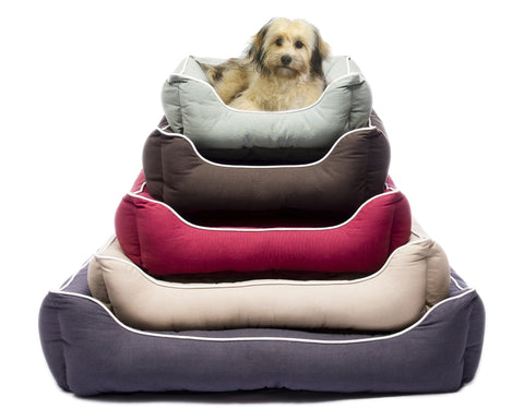 New Colors Dog Gone Smart Lounger Beds with Repelz-It™