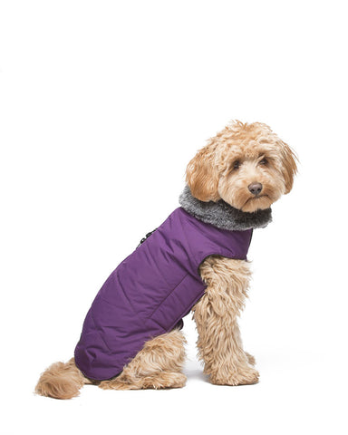 dog jacket, tamarack jacket, repelzit, repelz-it, nano technology, nano treatment, long-lasting dog jackets, winter dog jacket, fleece liner, royal purple dog jacket