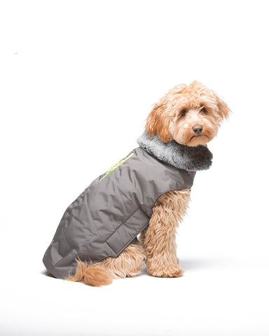 dog jacket, tamarack jacket, repelzit, repelz-it, nano technology, nano treatment, long-lasting dog jackets, winter dog jacket, fleece liner, grey dog jacket
