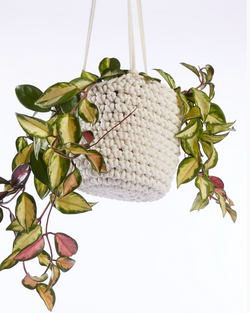 HEATHER ORR CROCHET PLANT POT HOLDER WORKSHOP