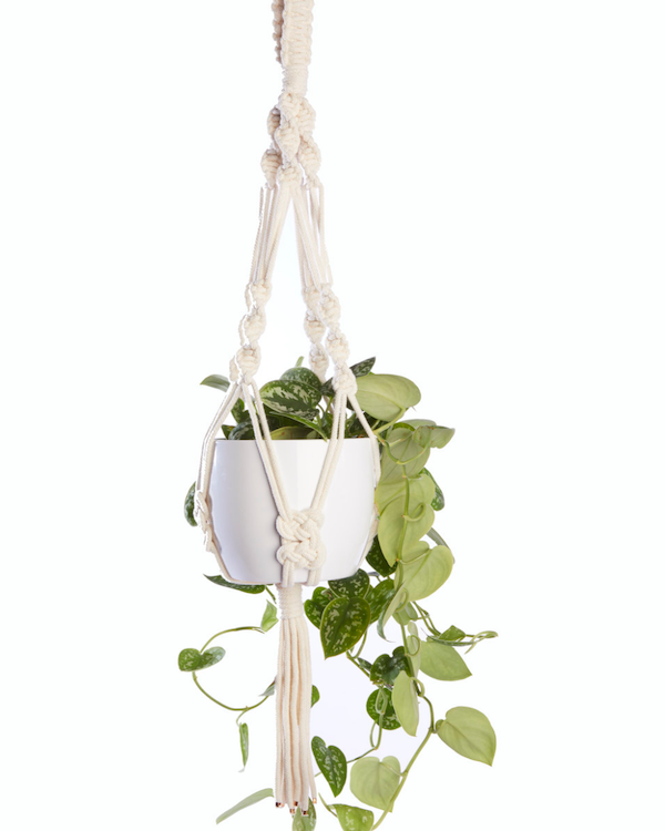 HEATHER ORR - HANDMADE MEDIUM MACRAME PLANT HANGER