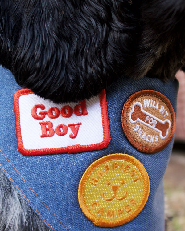 SCOUT'S HONOUR GOOD BOY MERIT BADGE