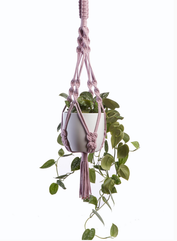 HEATHER ORR MACRAME PLANT HANGER WORKSHOP